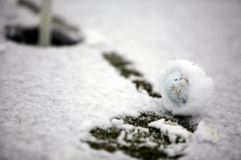 Snow Golf Ball