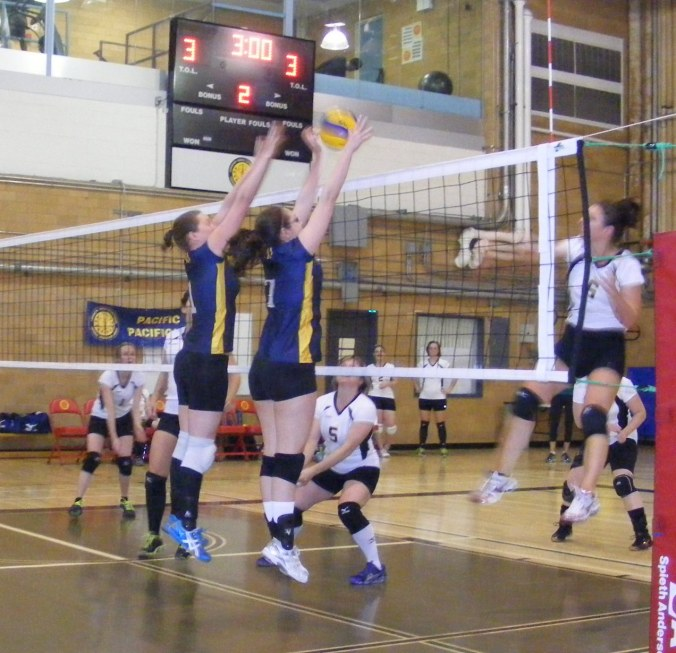 Blocking The Ball