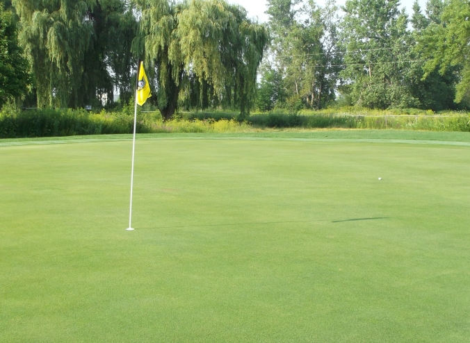 Roundel Glen 9th green - my ball 25 feet past the pin.