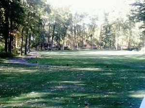 17th hole. 135 yards long. Hit to two feet for a tap in birdie!