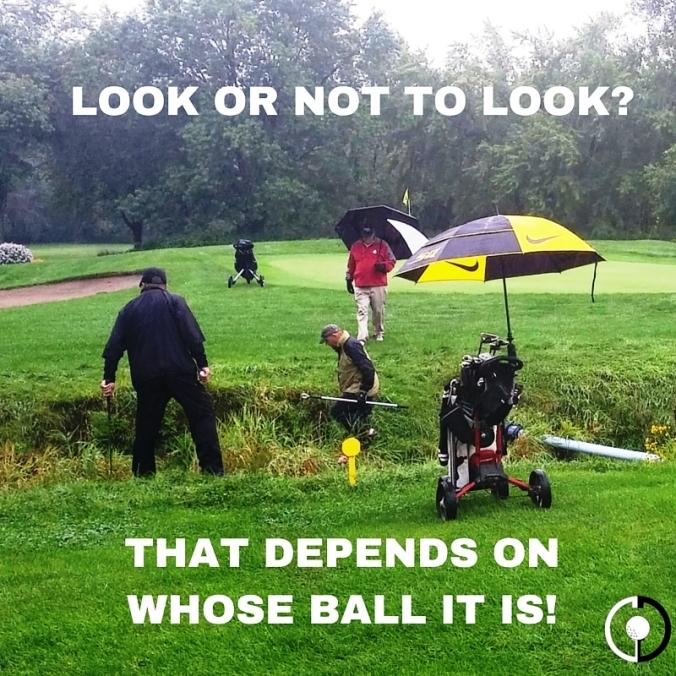 Lost golf balls