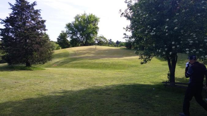 Salt Creek 13 Green