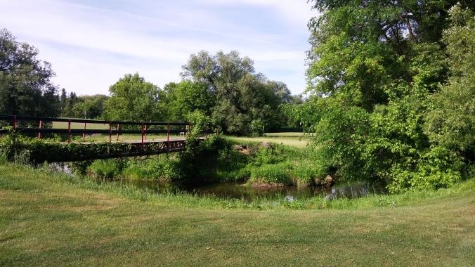 Salt Creek 16 Approach Green